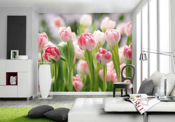 фотообои аромат тюльпанов фото