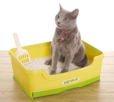 Отучить кота гадить под ванной