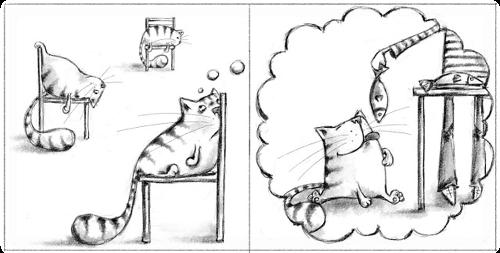 Кот может метить территорию просто от скуки