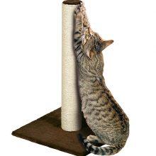 Как лучше приучить кошку к когтеточке?