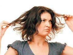 Сухие кончики волос: что делать?