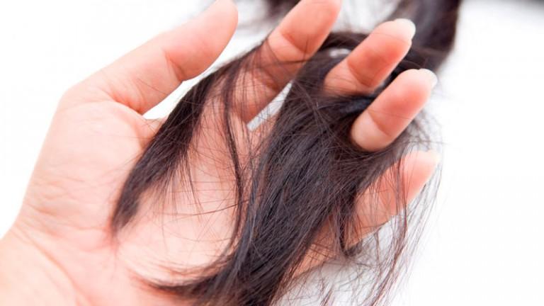 прядь волос в пальцах Как спасти сухие и ломкие волосы