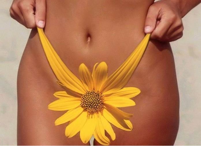 женские бедра и желтый цветк